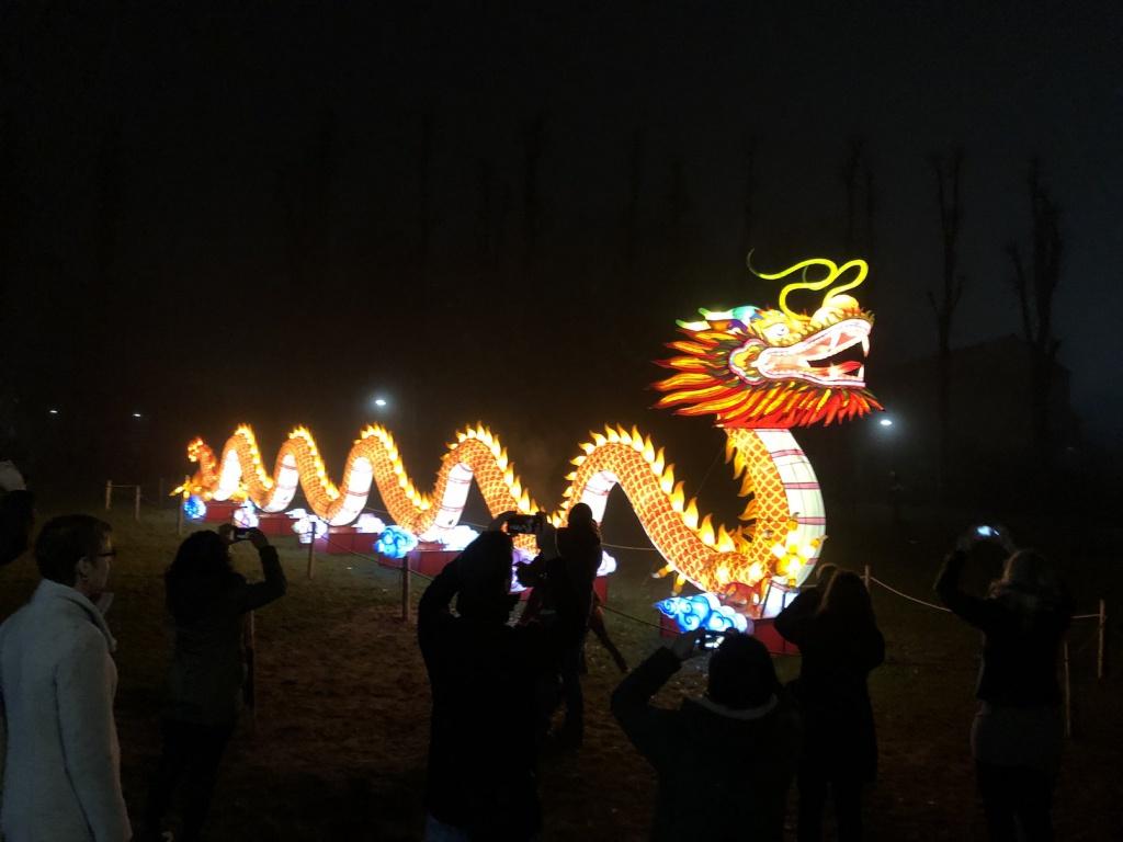 De Chinese draak van het lichtfestival.jpg