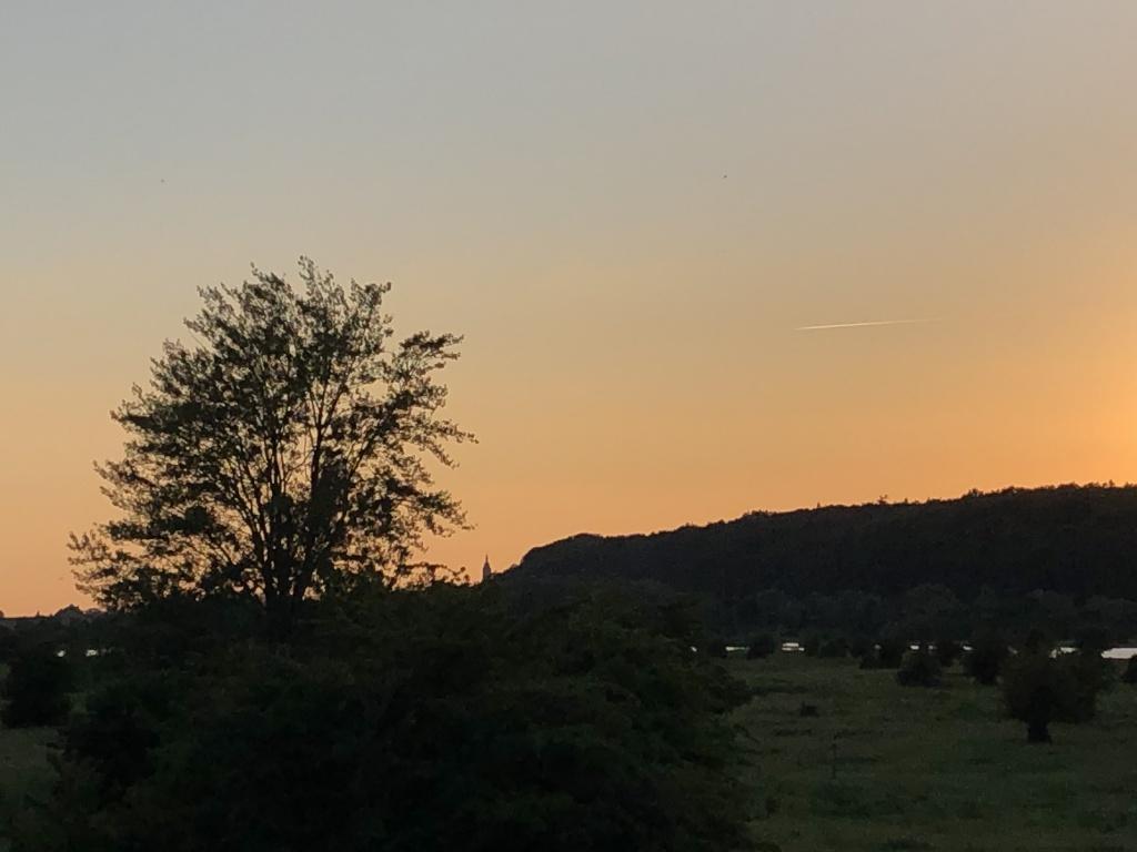 Grebbeberg en Cuneratoren 21-06-2019.jpg